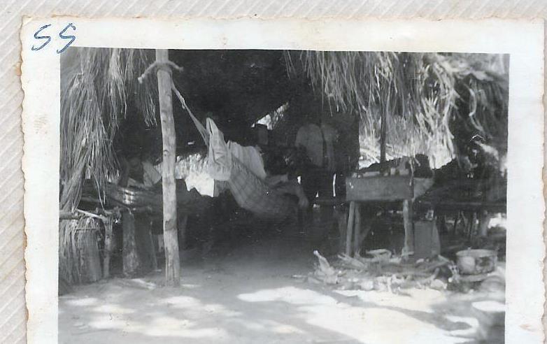 Uma Cidade Chamada Francisco Alves e Sua História