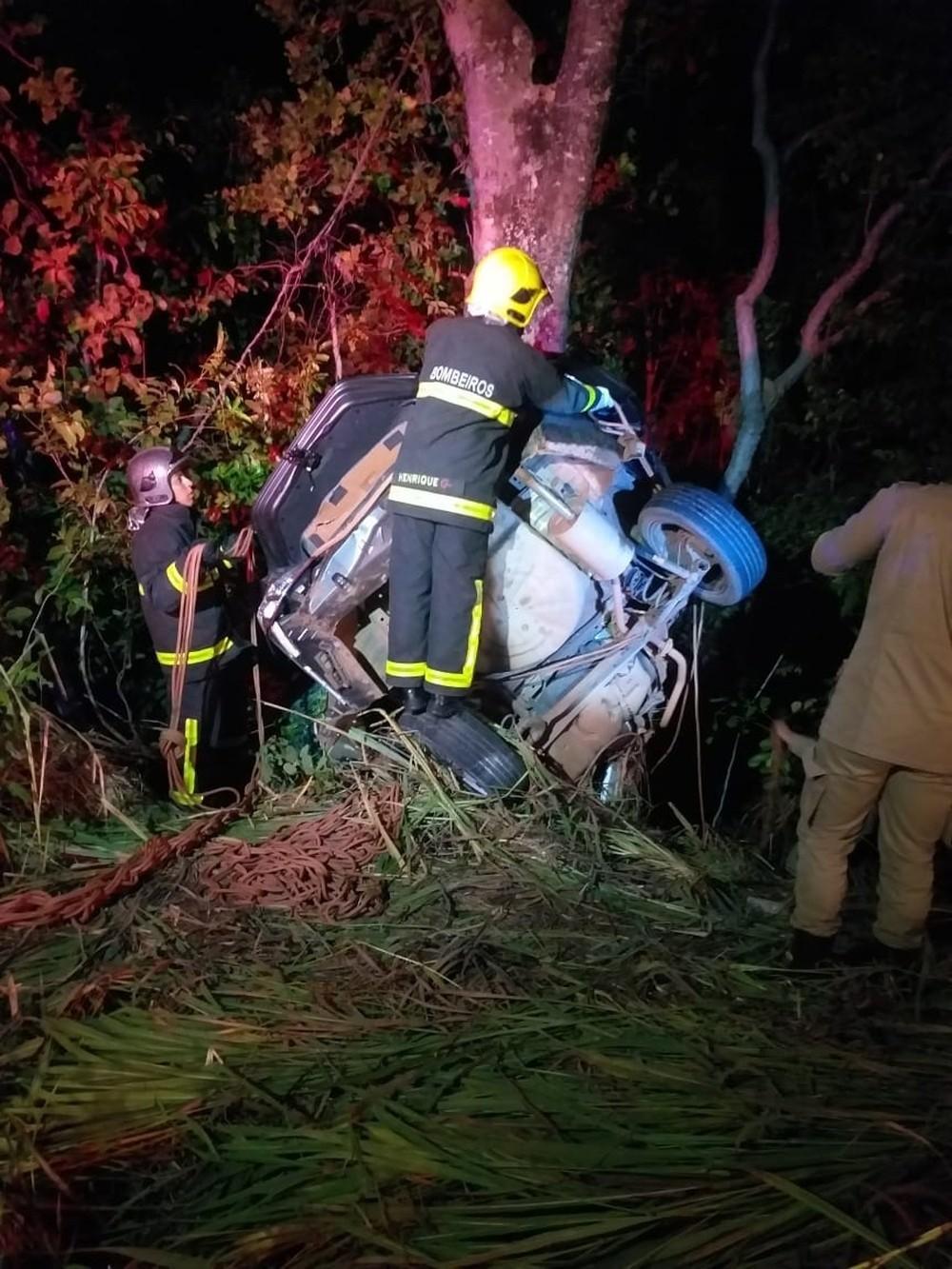 Motorista atropela capivara, sai da pista, bate em árvore e irmãos morrem em MT
