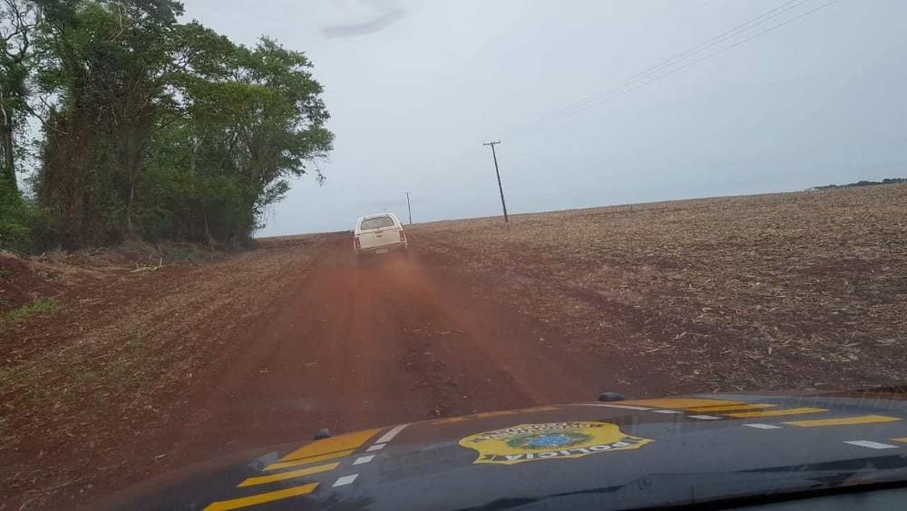 Operação conjunta apreende 6 toneladas de agrotóxicos ilegais no Paraná